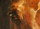 Портрет лошади на заказ